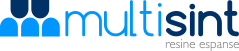 Multisint - home page
